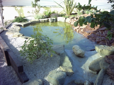 Pond-FishTank-Waterproofing1-1